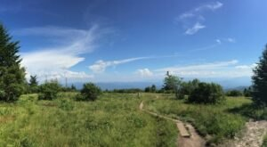 Andrews Bald Trail In North Carolina Leads To Panoramic Views Of The Smoky Mountains
