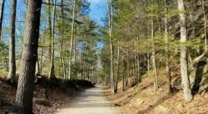 Hike Along An Old Railroad On The Grand Trunk Trail In Massachusetts