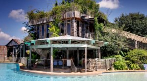 This Treehouse Airbnb In Texas Comes With Its Own Swim-Up Bar