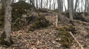 A Mysterious Woodland Trail In Wisconsin Will Take You To The Original Badger State Ruins