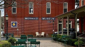 There's  A Mermaid Museum In Maryland And It's Full Of Fascinating Oddities, Artifacts, And More