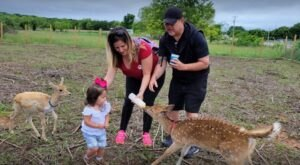 Enjoy A Fully Hands-On Petting Zoo Experience At Nomad's Animal Encounter In Oklahoma