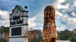 Don't Miss The Biggest Peanut Festival In Alabama This Year, The National Peanut Festival