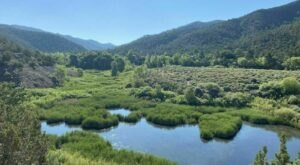Two Mile Pond Loop Is A 1.4-Mile Loop Trail In New Mexico That Is Perfect For Your Next Outing