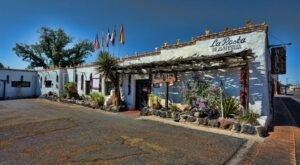 Visit The Piranha Tank And Aviary Inside This Unique Restaurant In New Mexico