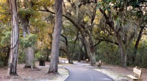 These 7 Scenic Trails Are Tucked Away In Some Of Alabama's Most Beautiful State Parks