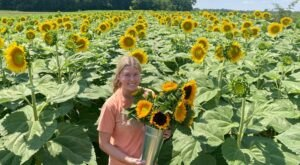 Pick Your Own Sunflowers At This Charming Farm Hiding In Maryland