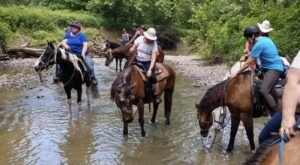 Hit The Trails On Horseback With This Family Friendly Horse Farm In Kentucky