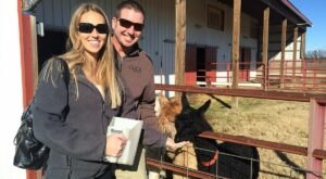 You Can Go Camping With Alpacas At Zena Suri Alpacas In Oklahoma