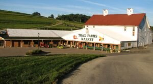 Start A New Autumn Tradition With A Family Visit To The Iconic Trax Farms Near Pittsburgh