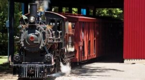The Pumpkin Train Ride In Wisconsin Is Scenic And Fun For The Whole Family