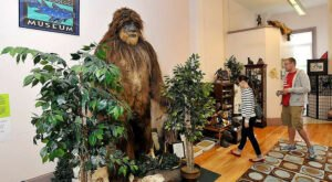 There's A Bigfoot Museum In Maine And It's Full Of Fascinating Oddities, Artifacts, And More