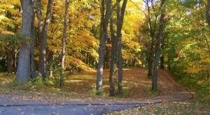 If You're A Fan Of Fall Foliage, You Simply Must Explore Hidden Lake Gardens In Michigan