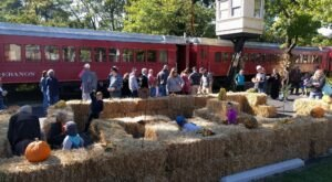 The Pumpkin Patch Express Train Ride In Ohio Is Scenic And Fun For The Whole Family