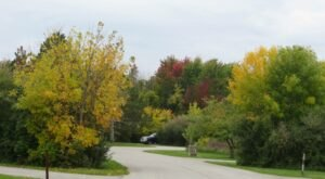 Spend The Night Under The Fall Foliage When You Camp At Maumee Bay State Park In Ohio