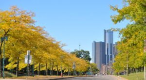 You'll Be Happy To Hear That Detroit's Fall Foliage Is Expected To Be Bright And Bold This Year