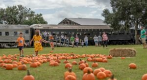The Pumpkin Patch Limited Train Ride In Florida Is Scenic And Fun For The Whole Family