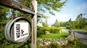 The Remote Winery In Connecticut That's Picture Perfect For A Day Trip