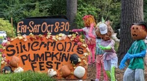 6 Pumpkin Festivals You Won't Want To Miss In North Carolina This Fall