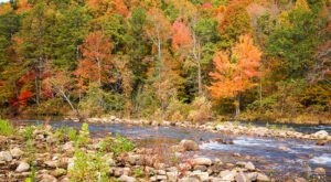 When And Where To Expect Alabama's Fall Foliage To Peak This Year