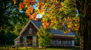When And Where To Expect New Hampshire's Fall Foliage To Peak This Year