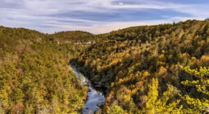 When And Where To Expect Tennessee's Fall Foliage To Peak This Year