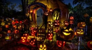 More Than 5,000 Glowing Pumpkins Will Light The Night At Minnesota's Jack-O-Lantern Spectacular This Year