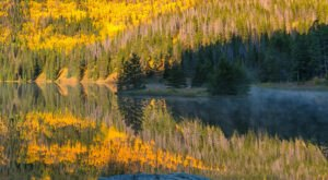 When And Where To Expect Colorado's Fall Foliage To Peak This Year