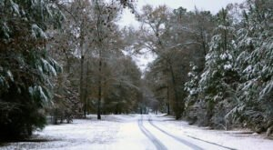 Get Ready To Bundle Up, The Farmers' Almanac Is Predicting Below Average Temperatures This Winter In Alabama