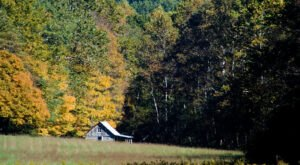 The Indiana Ghost Town That's Perfect For An Autumn Day Trip