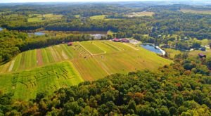 Add An Autumn Adventure To Your Itinerary With A Visit To Freedom Farms Near Pittsburgh