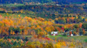 When And Where To Expect New York's Fall Foliage To Peak This Year