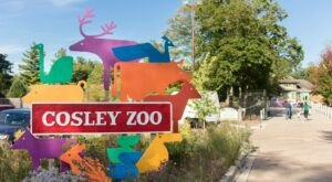 Cosley Zoo Is A Small Zoo Located On The Property Of A Former 1800s Train Station In Illinois