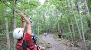Zip Line Through 50 Acres Of Secluded Forest At Bear Mountain Adventure In Virginia