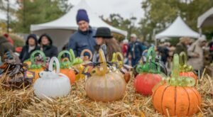Illinois' Morton Arboretum Will Host Its Annual Glass Pumpkin Patch This October