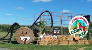 Drink Cider Slushies, Enjoy A Hay Ride And Explore A Corn Maze Experience At This New Jersey Farm