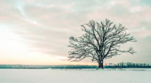 Get Ready To Bundle Up, The Farmers' Almanac is Predicting Freezing Cold Temperatures This Winter In Missouri