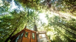 This Glamping Treehouse In Southern California Is The Treehouse Getaway Adults Will Love