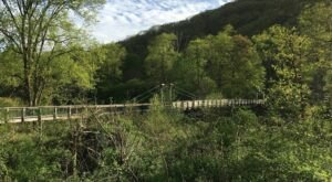 The Terrifying Swinging Bridge Near Pittsburgh That Will Make Your Stomach Drop