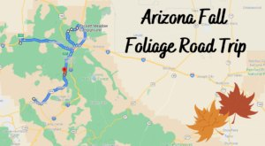 This Dreamy Road Trip Will Take You To The Best Fall Foliage In All Of Arizona