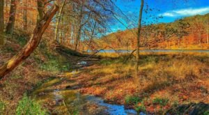 This Easy Fall Hike In Indiana Is Under 2 Miles And You'll Love Every Step You Take