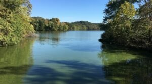 The Radnor Lake Loop In Nashville Takes You From The Woods To The Lake And Back