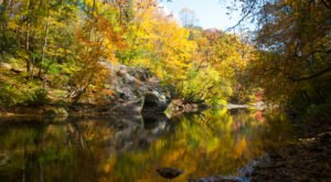 When And Where To Expect Kansas's Fall Foliage To Peak This Year