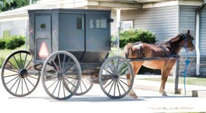 The Tiny Amish Town In Illinois That's The Perfect Day Trip Destination