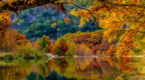 When And Where To Expect Texas' Fall Foliage To Peak This Year