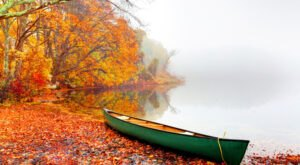 When And Where To Expect Massachusetts' Fall Foliage To Peak This Year