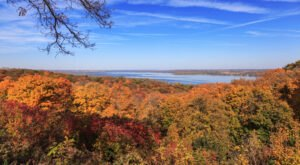 When And Where To Expect Illinois' Fall Foliage To Peak This Year