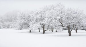 Get Ready To Bundle Up, The Farmers Almanac is Predicting Freezing Cold Temperatures This Winter In New Jersey