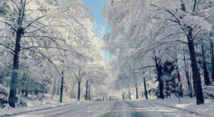 Get Ready To Bundle Up, The Farmers Almanac is Predicting Below Average Temperatures This Winter In North Carolina