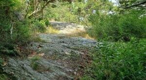 Grey Craig Trail In Rhode Island Is Full Of Awe-Inspiring Rock Formations